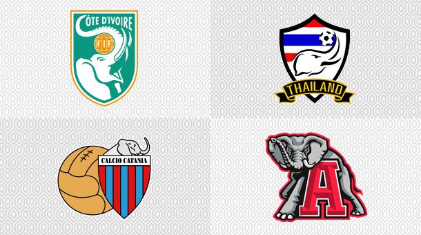 Sport elephants, Cote d'Ivore, Calcio Catania, Thailand,