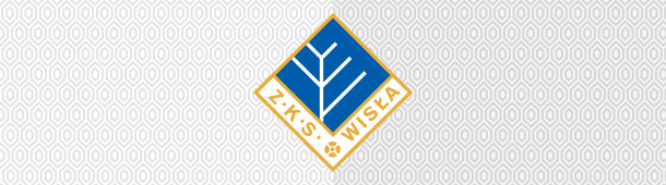 Wisła Puławy logo klubu