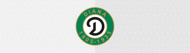 Diana Katowice logo klubu