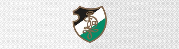 Diana Kattowitz logo klubu