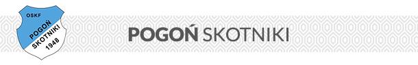 Logo Pogoni Skotniki