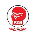 pz-bokserski-logo
