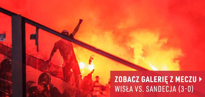Galeria z meczu Wisła-Sandecja 2017