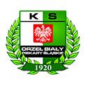 Orzeł Biały Piekary Śląskie 100-lecie